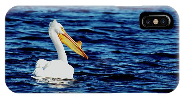 Wisconsin Pelican IPhone Case