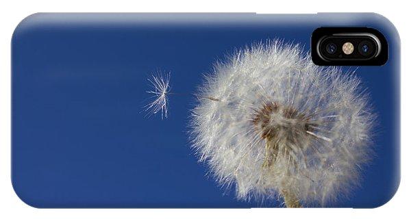 Wish Granted IPhone Case