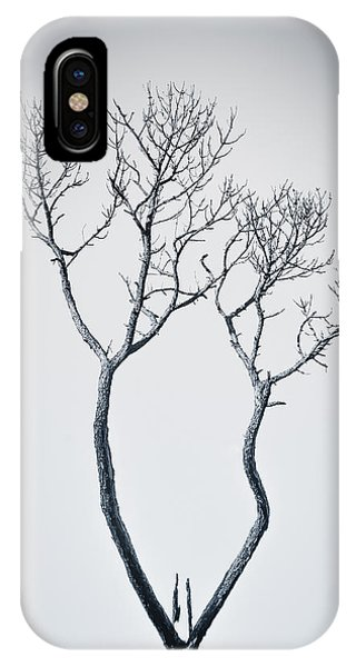 IPhone Case featuring the photograph Wishbone Tree by Carolyn Marshall