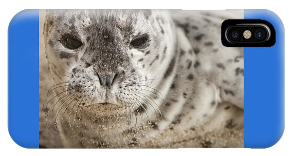 IPhone Case featuring the photograph Wiskers by David Millenheft