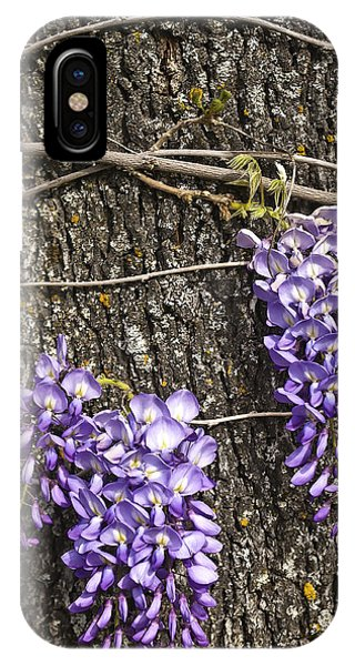 IPhone Case featuring the photograph Wisteria  by Sherri Meyer