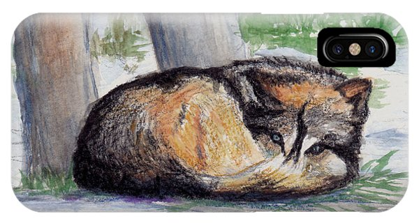 Wolf At Rest IPhone Case