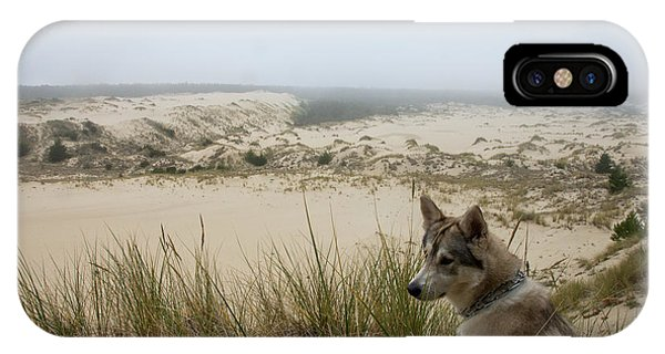 Wolf At The Dunes IPhone Case