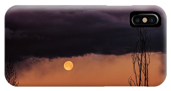 Wolf Moon Phone Case by Roger Chenery