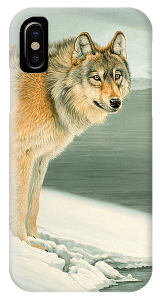 Yellowstone iPhone Case - Wolf Portrait-lamar Valley  by Paul Krapf