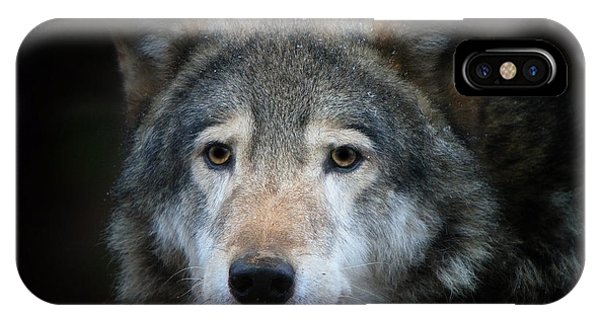 Wolf Phone Case by Vladimir Meshkov