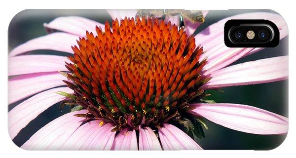 Honeybee iPhone X Case - Wonder Of Pollen by Karen Wiles