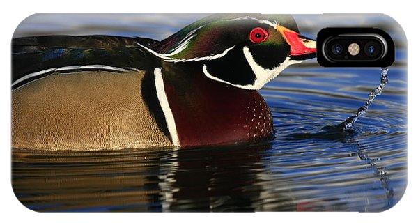 Wood Duck Waterdrops IPhone Case