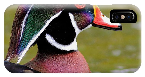 Wood Ducks iPhone Case - Wood Duck With Water Beads by Robert Frederick