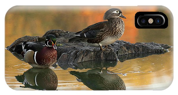 Wood Ducks IPhone Case