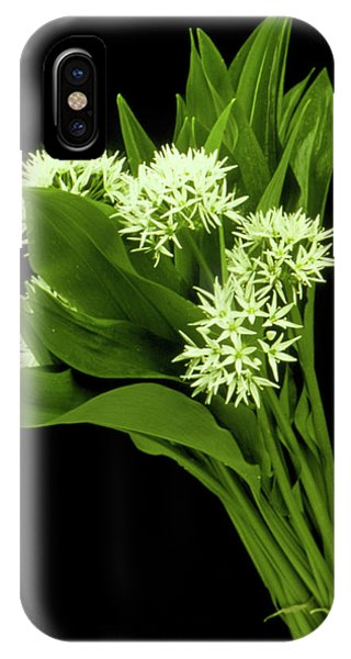 Wood Garlic Plants Phone Case by Th Foto-werbung/science Photo Library