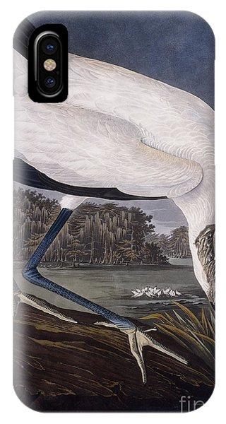 Ibis iPhone Case - Wood Ibis by John James Audubon