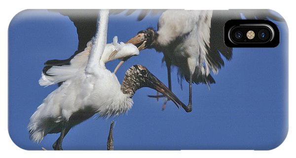 Wood Stork Fight IPhone Case