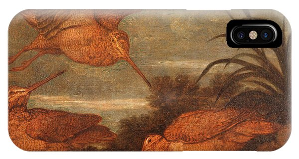 Woodcock iPhone Case - Woodcock At Dusk, Francis Barlow, 1626-1702 by Litz Collection
