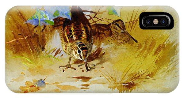 Woodcock iPhone Case - Woodcock In A Sandy Hollow by Celestial Images