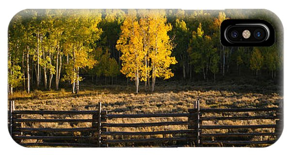 San Miguel iPhone Case - Wooden Fence And Aspen Trees by Panoramic Images