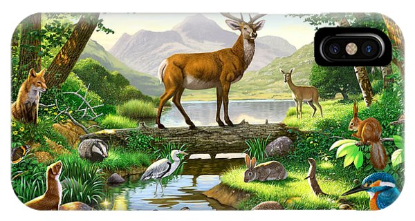 Kingfisher iPhone Case - Woodland Harmony by Chris Heitt