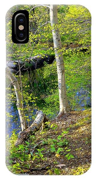 Woodland Stream In Spring Phone Case by A Gurmankin