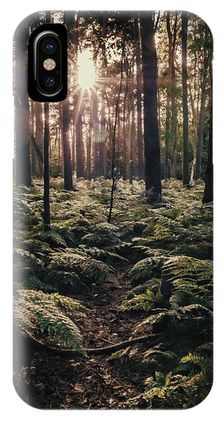 Woodland Trees IPhone Case