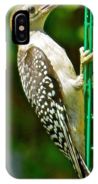 Woodpecker 101 Phone Case by Patsy Pratt