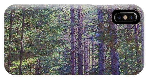 Woods II IPhone Case