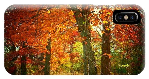 Woods In Autumn IPhone Case