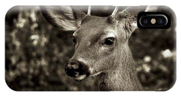 Woodside Deer IPhone Case