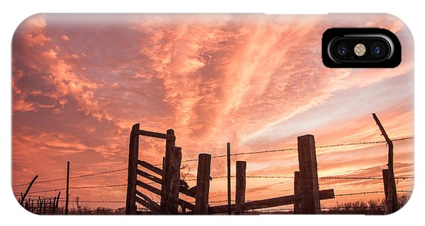 Working Cattle/ End Of Day IPhone Case