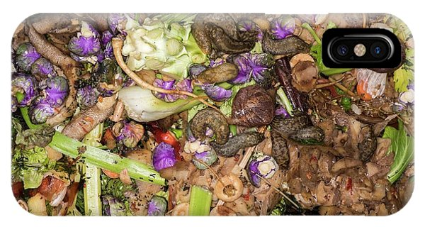 Organic Matter iPhone Case - Worms And Slugs In A Compost Bin by David Parker
