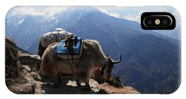 Yaks 1a IPhone Case