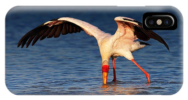 Behaviour iPhone Case - Yellow-billed Stork Hunting For Food by Johan Swanepoel