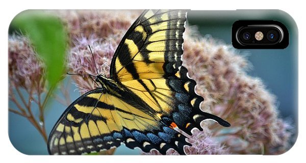 Yellow Butterfly IPhone Case