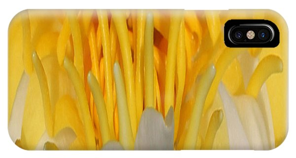 Yellow Center 1 IPhone Case