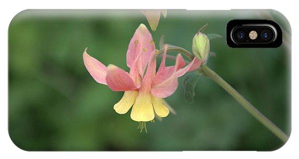 Yellow Columbine IPhone Case