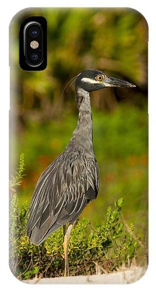Yellow Crowned Night Heron Dune Watch IPhone Case