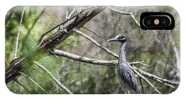 Yellow Crowned Night Heron Phone Case by Frank Feliciano