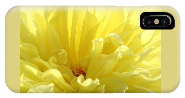 Yellow Dahlia Burst IPhone Case
