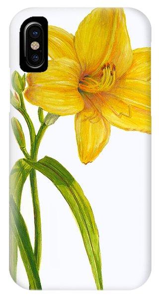 Yellow Daylily - Hemerocallis IPhone Case