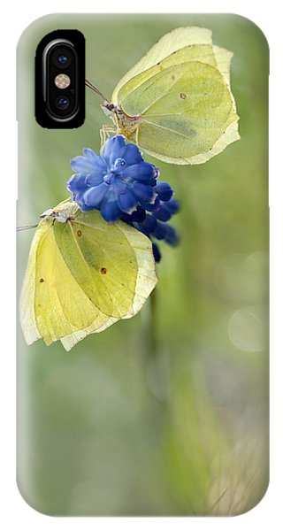 Yellow Duet IPhone Case