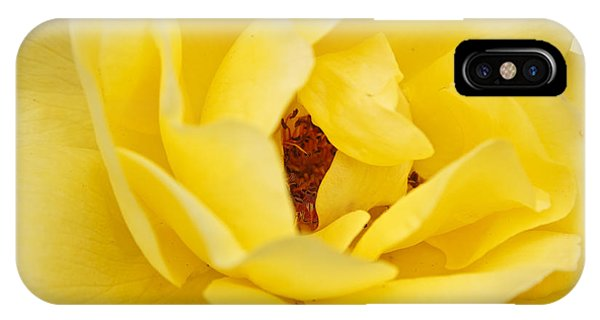 IPhone Case featuring the photograph Yellow English Rose by Susan Leonard