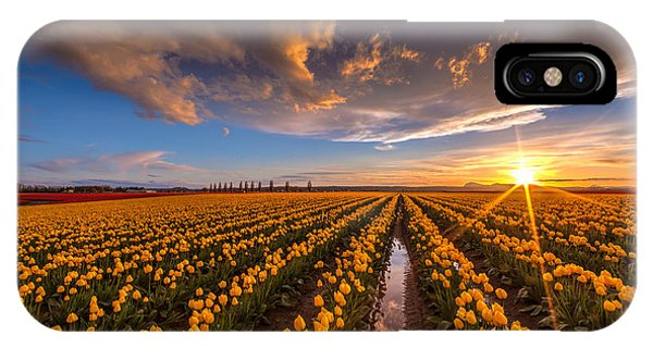 Yellow Fields And Sunset Skies IPhone Case