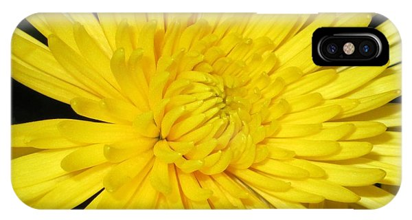 Yellow Flower Closeup IPhone Case