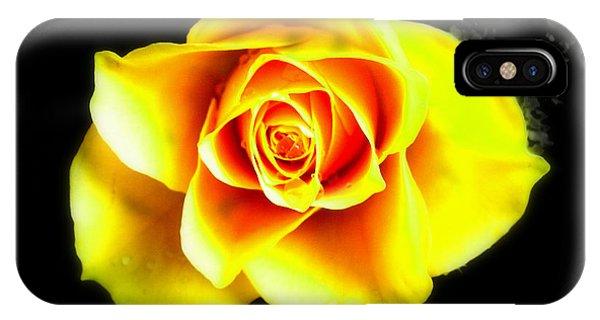 Yellow Flower On A Dark Background IPhone Case