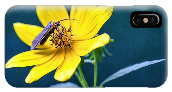 Yellow Flower With Company IPhone Case