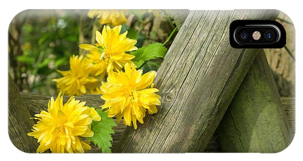 Yellow Flowers And Fence IPhone Case