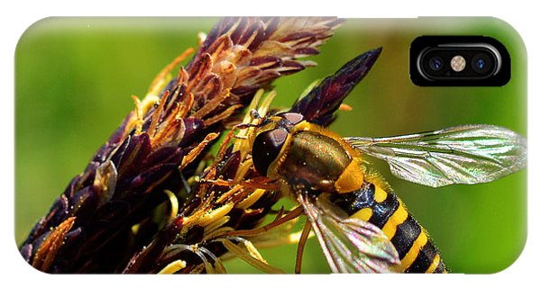 Yellow Fly IPhone Case