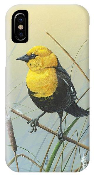 Yellow-headed Black Bird IPhone Case