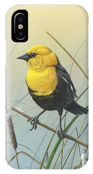 Yellow-headed Black Bird IPhone Case