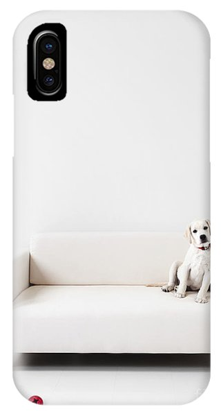 Yellow Lab iPhone Case - Yellow Lab In A White Room by Diane Diederich