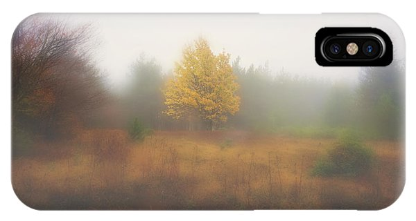 Yellow Leaves Of Tree In Fog At Dolly Sods Phone Case by Dan Friend